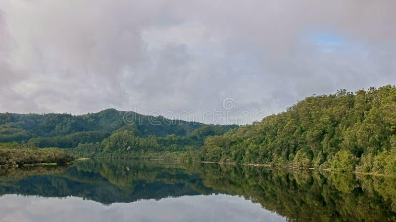 Tropikalny las deszczowy i Gordon rzeczny rejs w Tasmania, Australia zdjęcia stock
