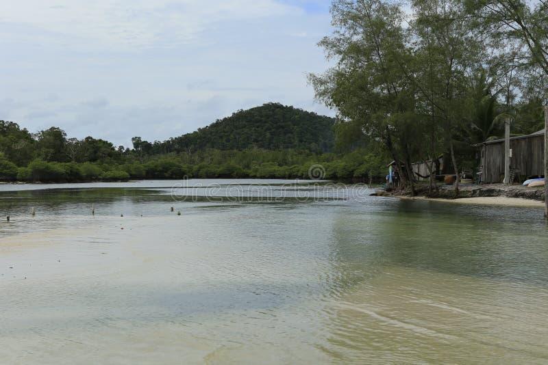 Tropikalny las w wyspie Koh Rong w Kambodża obrazy stock