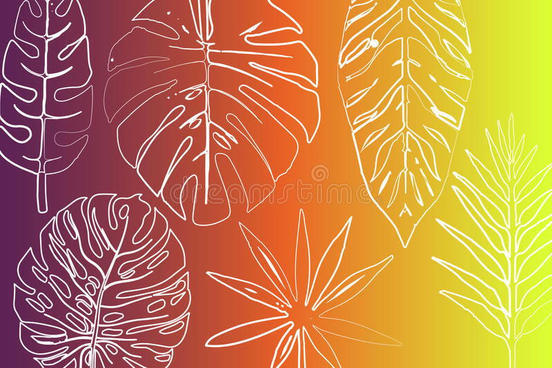Tropikalny lato raju tło corsica wyspy śródziemnomorska palmowa fotografia brać drzewo obraz royalty free