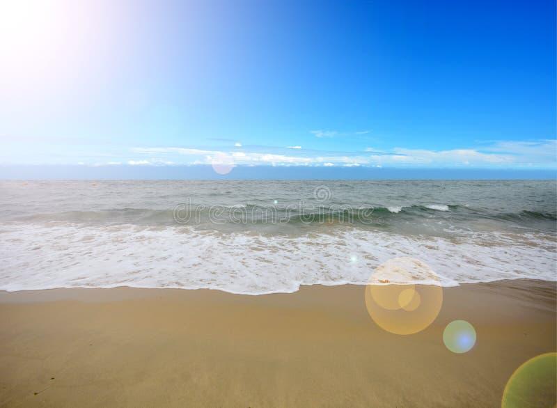 Download Tropikalny na plaży obraz stock. Obraz złożonej z eden - 53782639