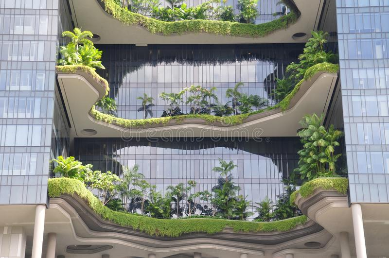 Tropikalny niebo ogród obrazy royalty free