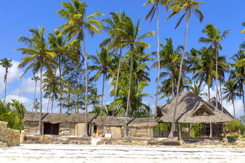Tropikalny ocean plaży krajobraz w Zanzibar, Afryka Drzewo i pa zdjęcie royalty free