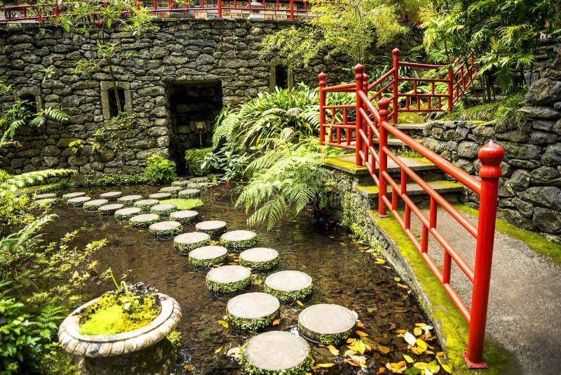 Tropikalny ogród przy Monte nad Funchal madera obrazy royalty free