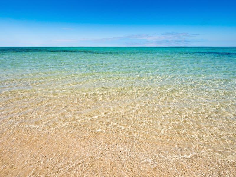 Tropikalny opróżnia plażę na jaskrawego słonecznego dnia dennym horyzoncie w tle fotografia stock