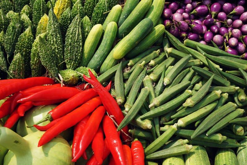 Tropikalny owoc i warzywo pokaz, gorzka gurda, pieprz, oberżyna, ogórek, okra obrazy stock