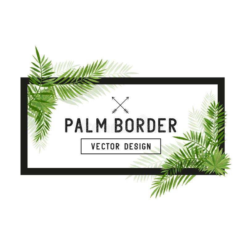 Tropikalny Palmowego liścia granicy wektor ilustracja wektor