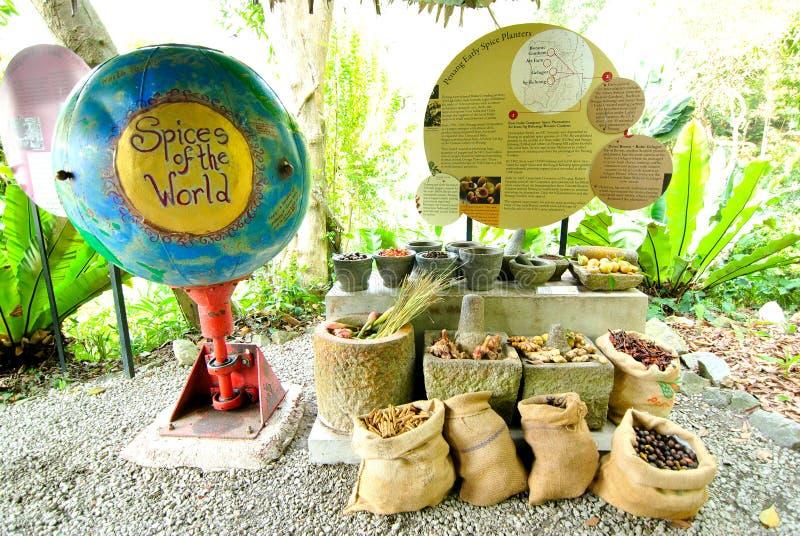 Tropikalny pikantność ogród Penang zdjęcia stock