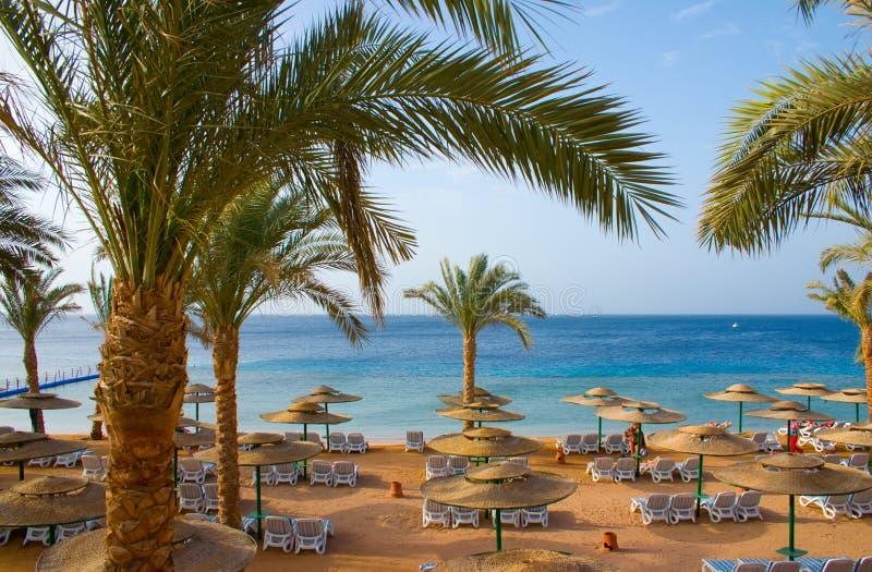 tropikalny plażowy hotelowy piasek zdjęcia stock