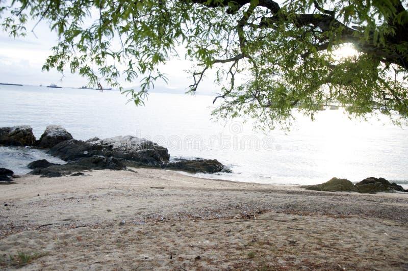 tropikalny plażowy lato zdjęcia stock