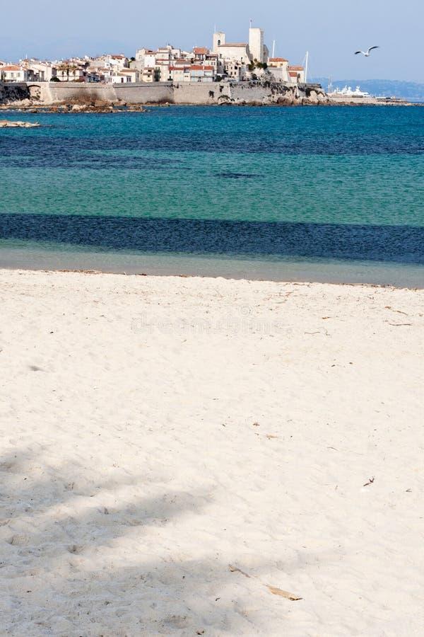 tropikalny plażowy palmowy cień obraz stock