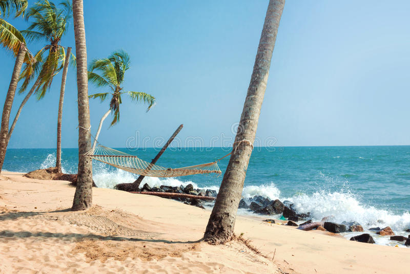 Download Tropikalny plażowy hamak obraz stock. Obraz złożonej z pływowy - 57655263