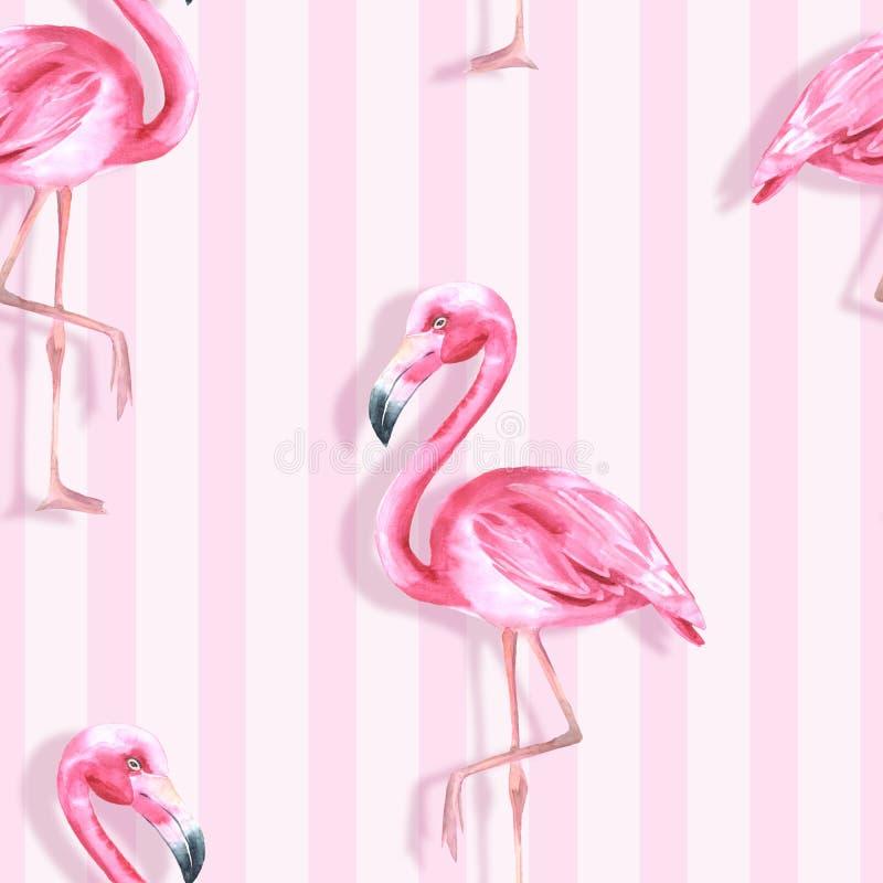Tropikalny Ptak Różowy flaming 3 deseniowego bezszwowy ilustracja wektor