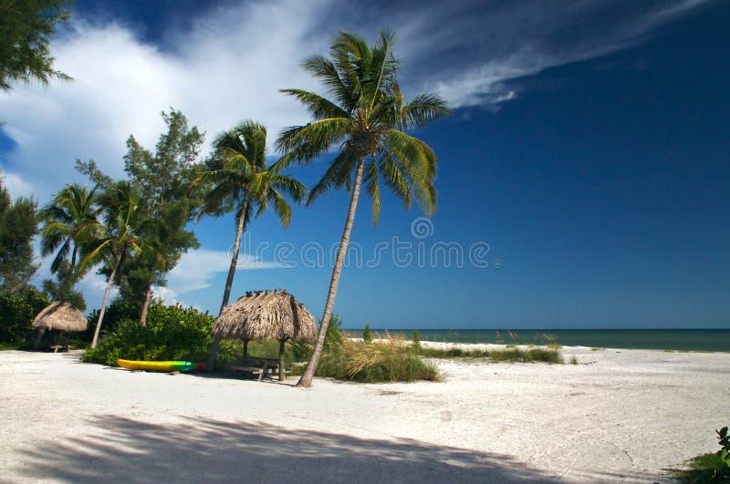 tropikalny raj. obraz royalty free