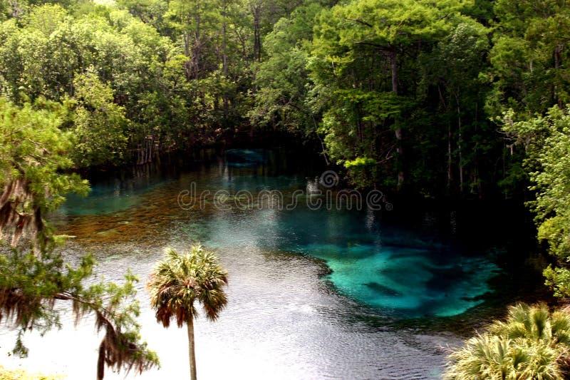 tropikalny raj. obrazy stock