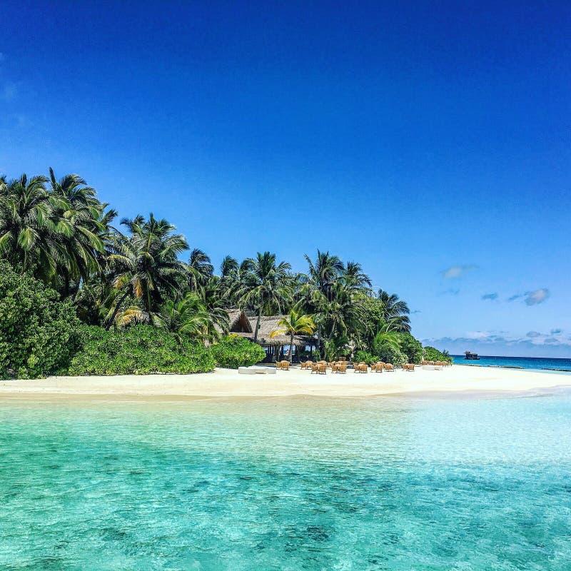 tropikalny raj zdjęcie stock