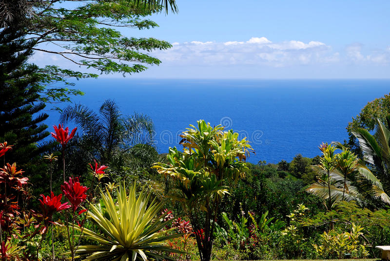 Tropikalny raj Hana Drogowy Maui Hawaje obrazy royalty free