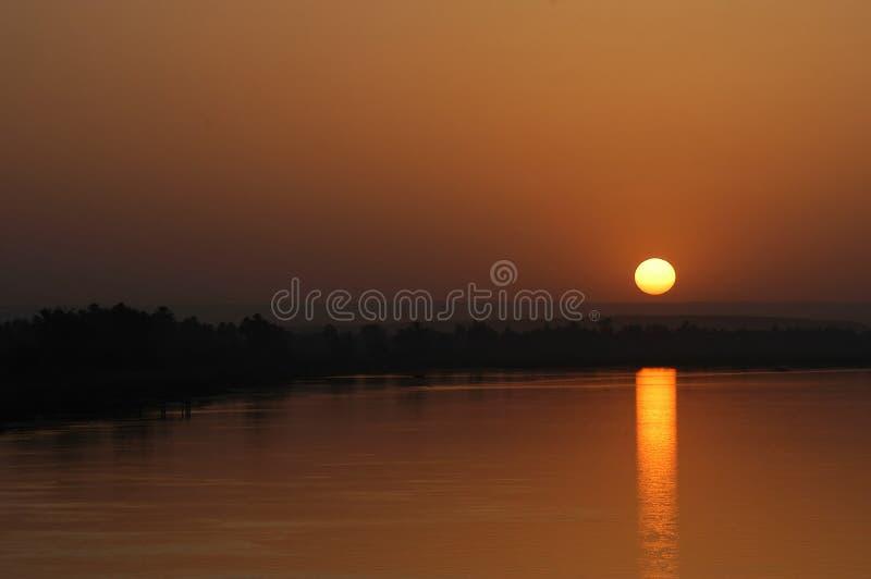 tropikalny słońca fotografia royalty free