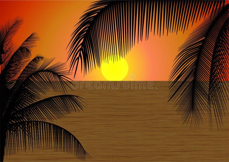 tropikalny słońca ilustracja wektor