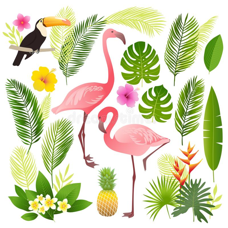 Tropikalny set Palma opuszcza, tropikalne rośliny, kwiaty, ananas, flaming, pieprzojad zdjęcie royalty free
