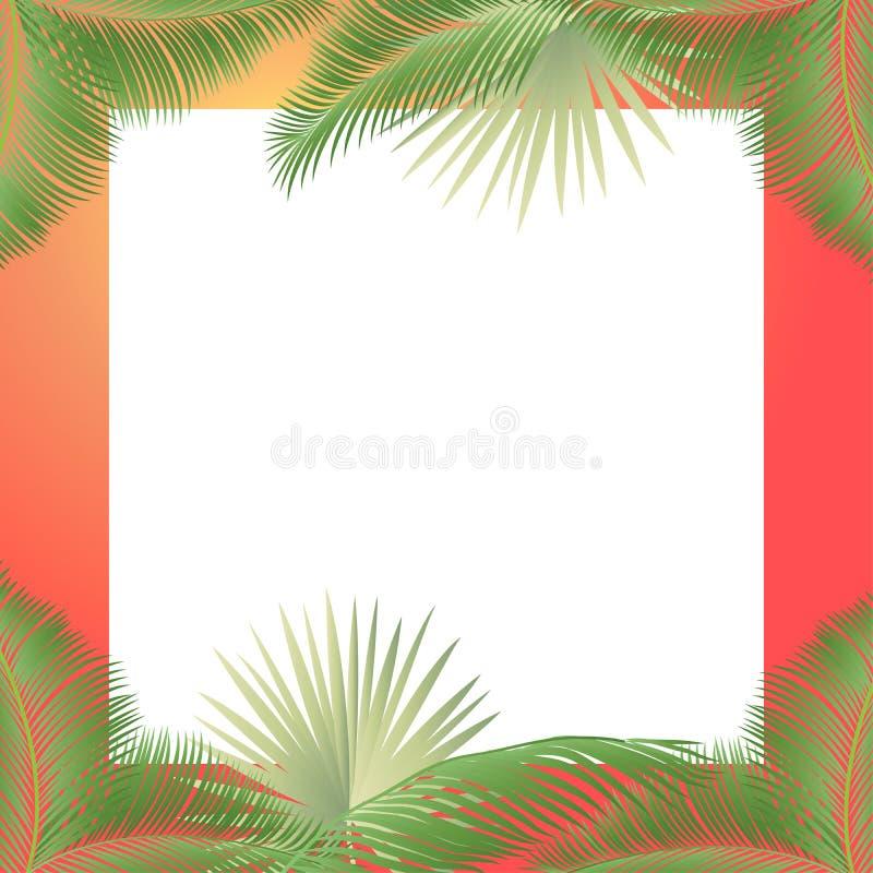 tropikalny tło ilustracji