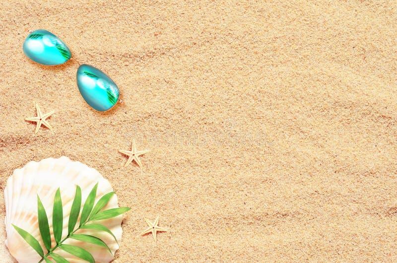 tropikalny tło Drzewko Palmowe Branche z rozgwiazdą i seashell na piaskowatym tle Podróż kosmos kopii zdjęcia royalty free