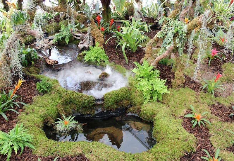 Tropikalny tropikalnego lasu deszczowego ogródu pokazu Southport przedstawienie obrazy royalty free