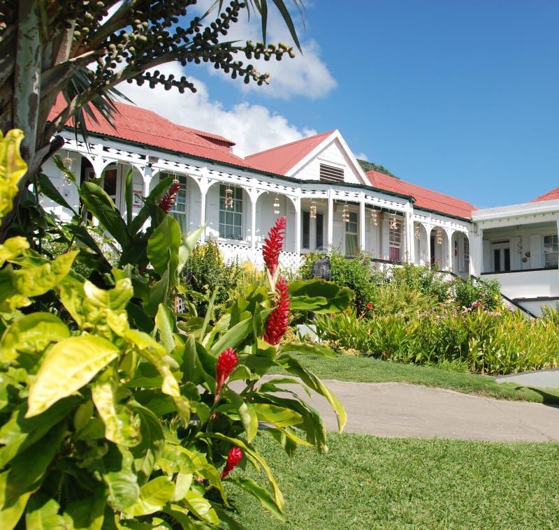 tropikalny w domu zdjęcia stock