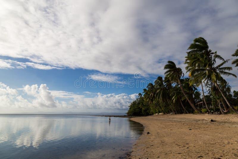 Tropikalny wyspa raj - Fijii, wyspa Beqa obrazy royalty free