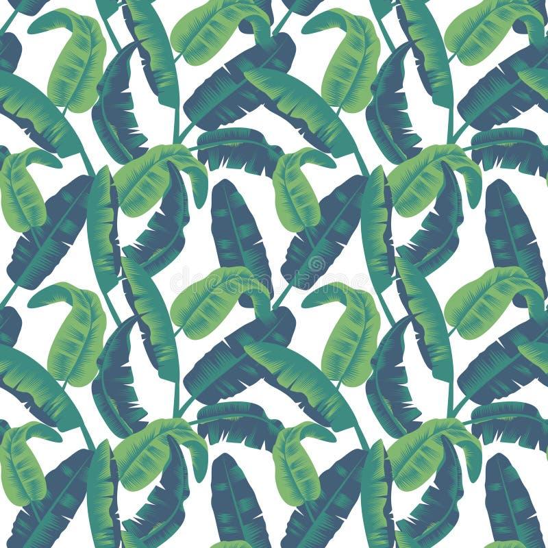Tropikalnych liści bezszwowy wzór Drzewka palmowego tło royalty ilustracja