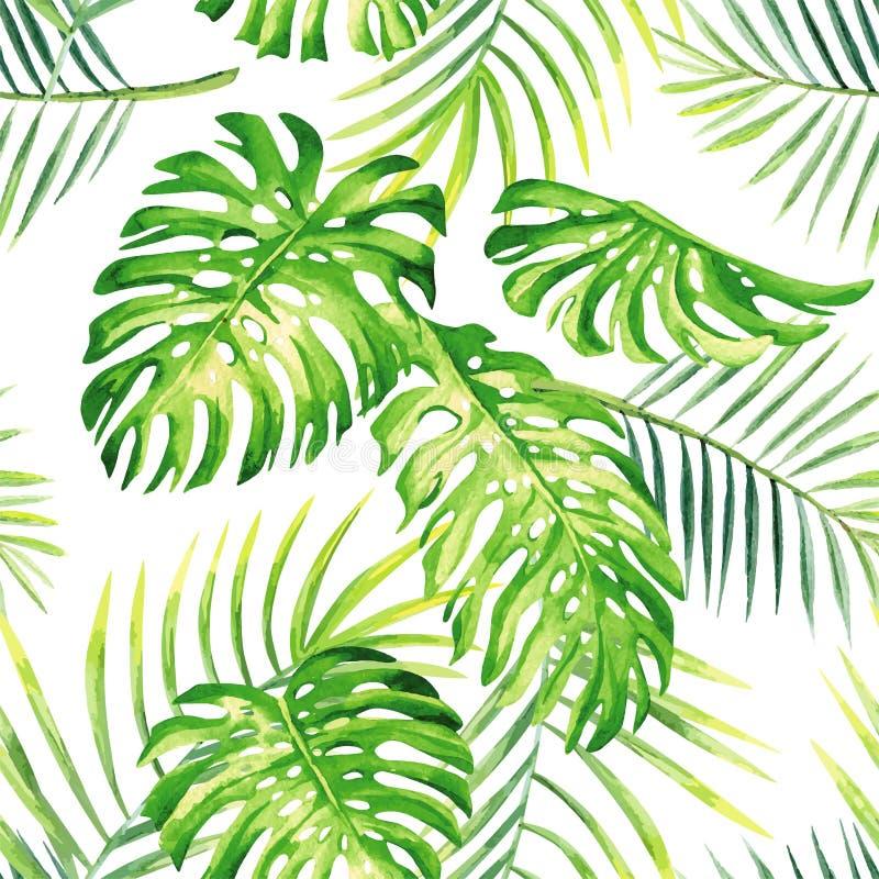 Tropikalnych rośliien akwareli lata bezszwowy tło ilustracja wektor