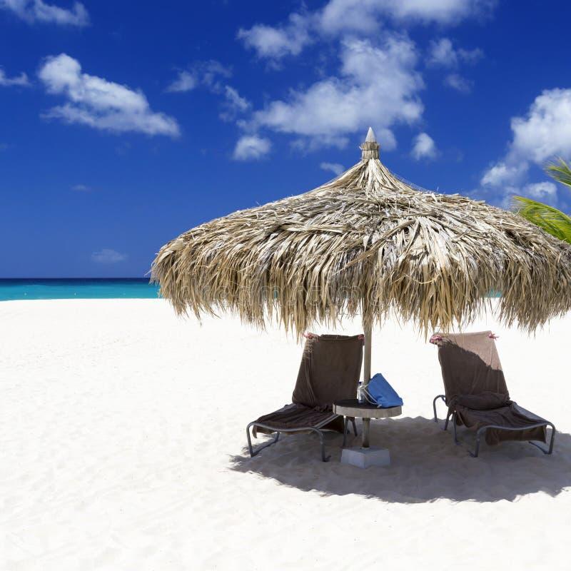 tropiques photographie stock libre de droits