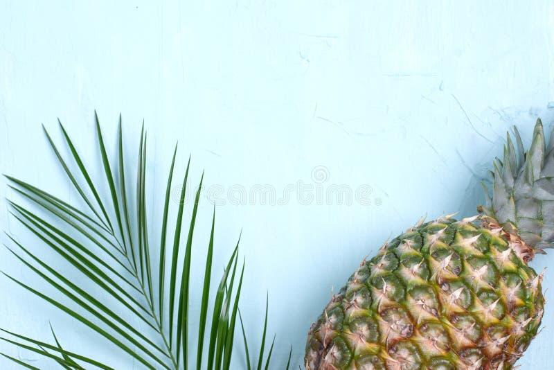 Tropisch Ananasfruit palmtak op een blauwe achtergrond Vrije ruimte voor tekst De vlakke exemplaarruimte, legt hierboven royalty-vrije stock foto