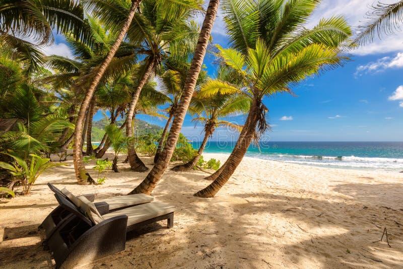Tropisch Anse-Intendance strand in Seychellen in Mahe Island stock afbeeldingen