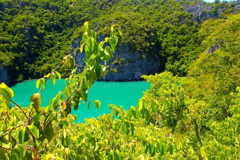 Tropisch baaieiland met toevlucht, de achtergrond van de reisvakantie stock afbeeldingen