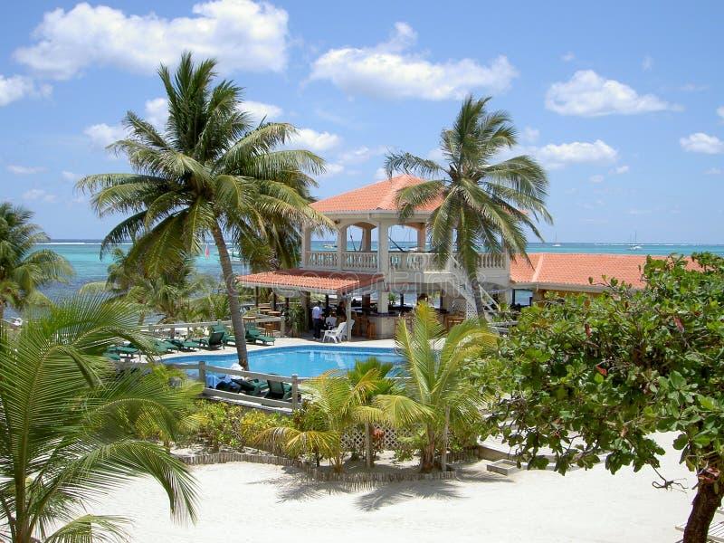 Tropisch Belize stock foto's