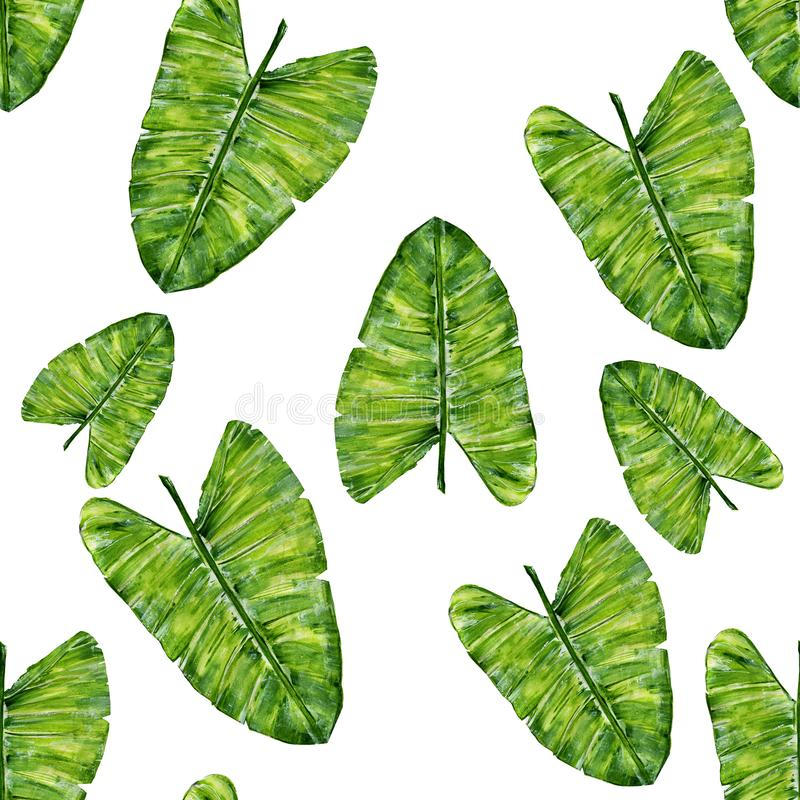 Tropisch bladeren naadloos patroon Waterverf hand-trekkende illustratie vector illustratie