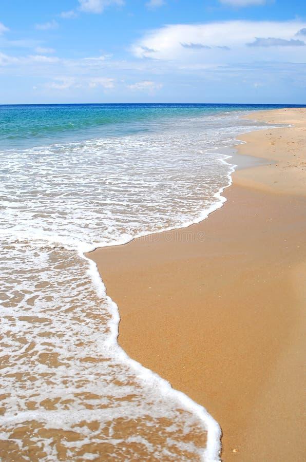 Tropisch Caraïbisch strand royalty-vrije stock foto