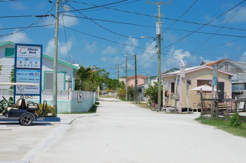 Tropisch Caye-Breeuwijzereiland op een zonnige dag, Belize stock foto