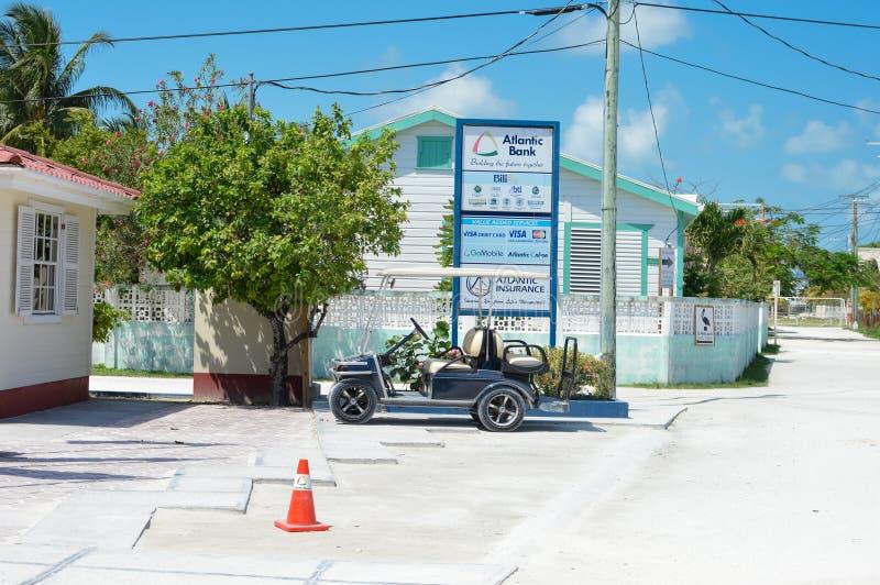 Tropisch Caye-Breeuwijzereiland op een zonnige dag, Belize stock fotografie
