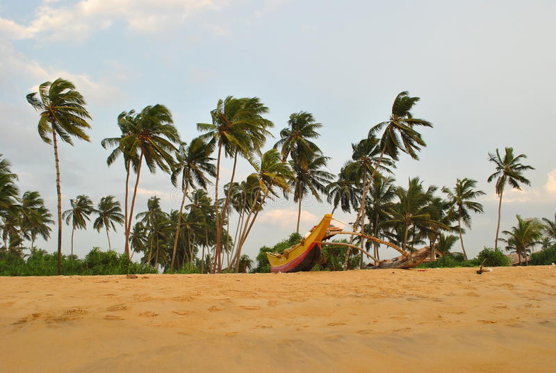 Tropisch eiland in de oceaan van Sri Lanka royalty-vrije stock fotografie