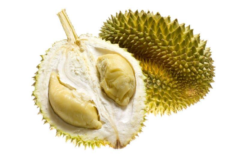 Tropisch fruit - Durian stock afbeeldingen