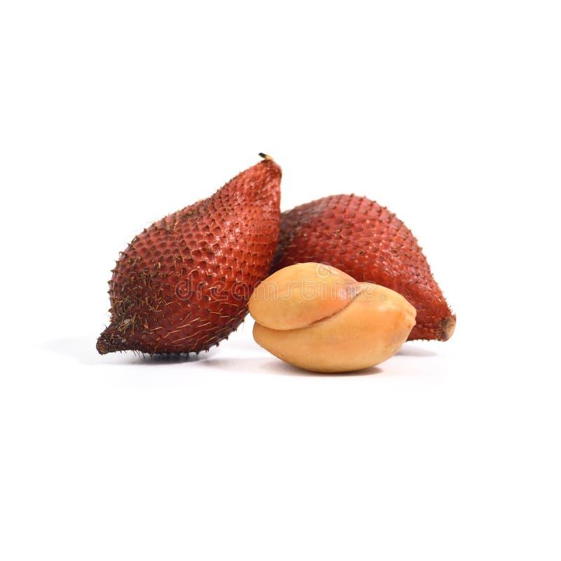 Tropisch fruit: Het fruit van de Salakslang op witte achtergrond wordt geïsoleerd die stock afbeeldingen