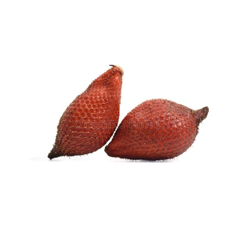 Tropisch fruit: Het slangfruit, Salak, Salacca of Sala isoleren  stock afbeelding