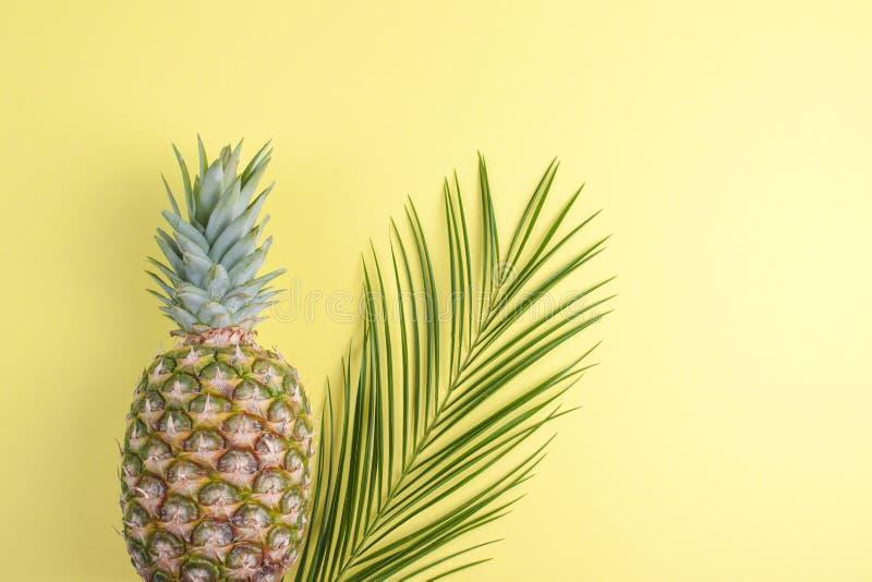 Tropisch fruit van ananas en palmtak op een gele achtergrond Vrije ruimte voor tekst De ruimte van het exemplaar Vlak leg hierbov royalty-vrije stock foto's