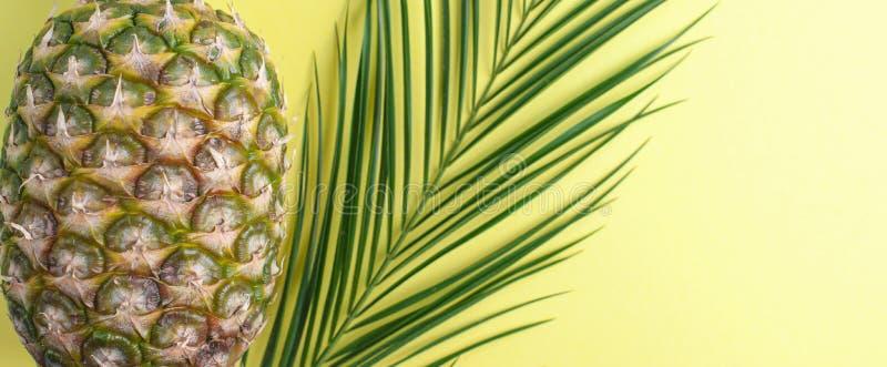 Tropisch fruit van ananas en palmtak op een gele achtergrond Vrije ruimte voor tekst De ruimte van het exemplaar Vlak leg hierbov stock foto's