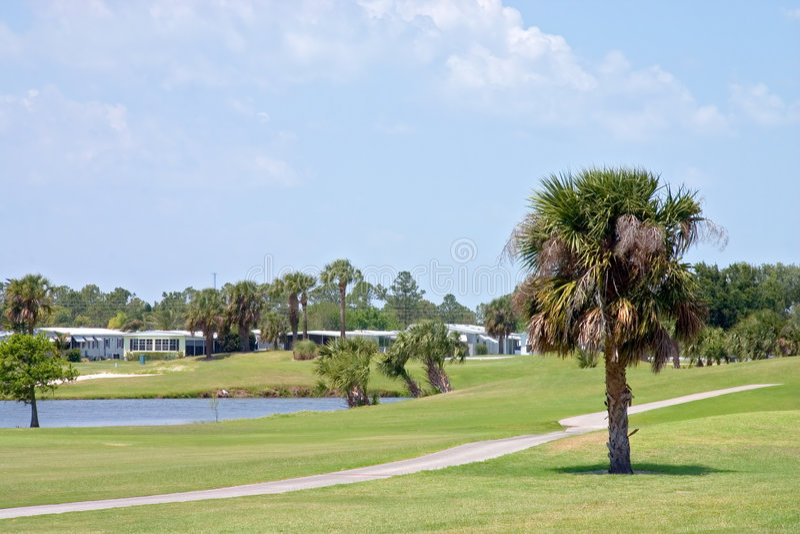Tropisch Golf Course2 royalty-vrije stock afbeelding
