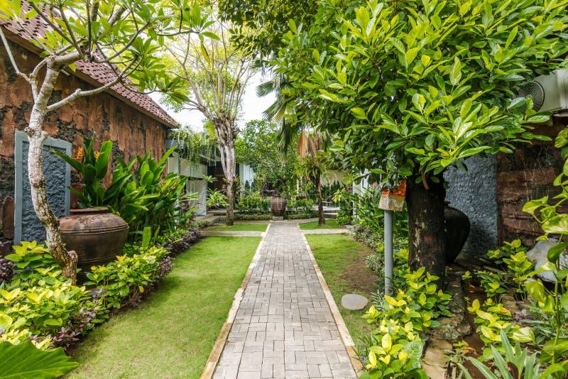 Tropisch groen tuingebied bij goedkoop prijshotel stock foto