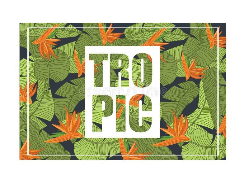 Tropisch, helder tropisch ontwerp met exotische bloemen en bladeren, in de zomerbanner, affiche kleurrijke vectorillustratie royalty-vrije illustratie
