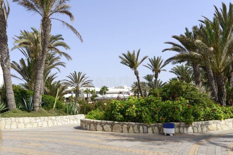 Tropisch hotel op de Atlantische Oceaan in Agdir stock foto's