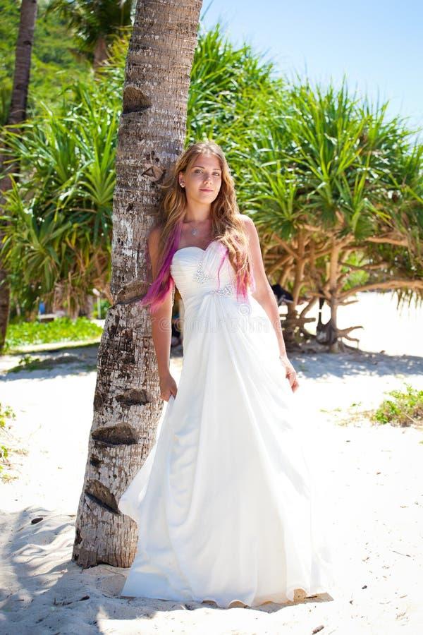 Tropisch huwelijk, bruid dichtbij palm stock foto's